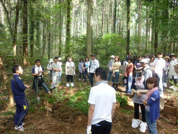 forest-k.JPGのサムネール画像